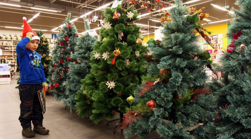 Пять признаков правильной новогодней ёлки от ЭКА