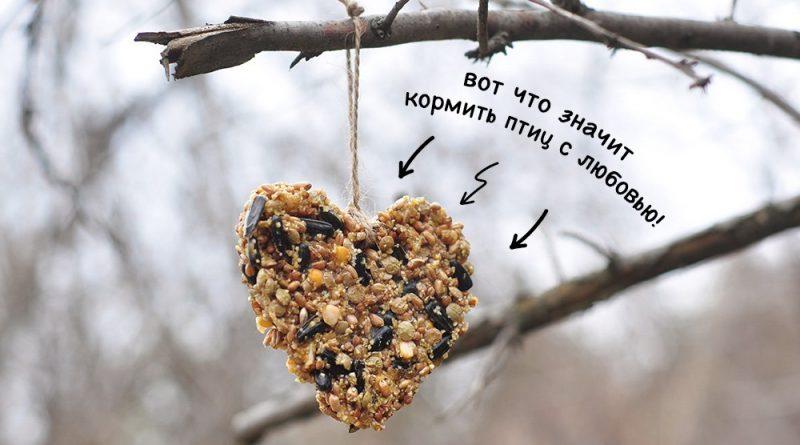 Астраханские волонтеры стали призерами всероссийского флешмоба «Хранители птиц»