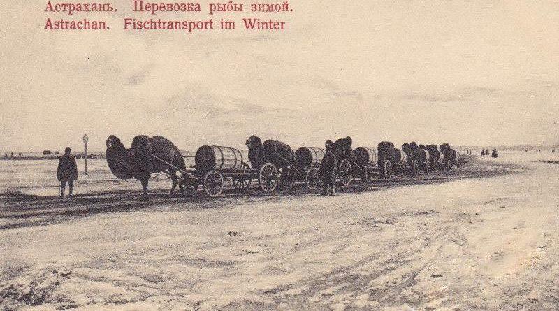 Астрахань: рыбная столица России на старинных открытках (часть 2)