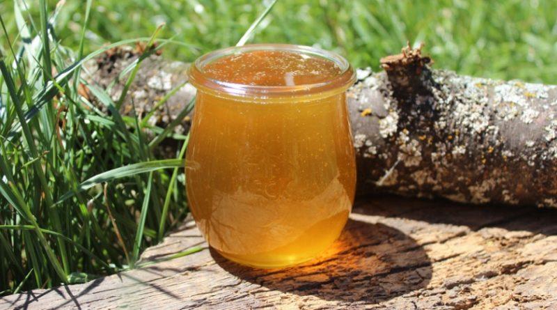 В Астрахани обнаружили опасный для человека мед