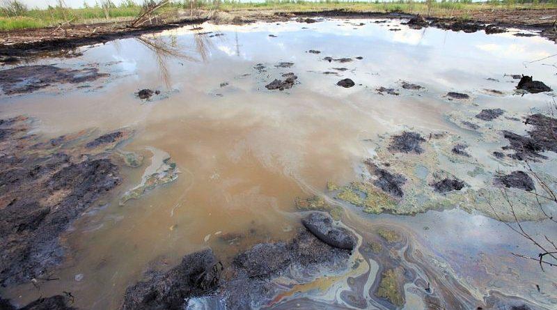 В Астрахани продолжаются эко-скандалы: нефтеямы рекультивировали с нанесением вреда природе