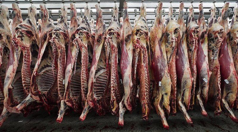 Объем экспортированной в Иран астраханской баранины достиг 800 тонн
